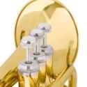 Trombe e tromboni